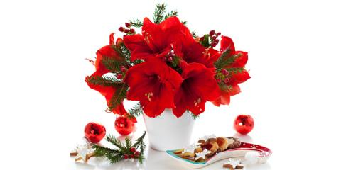 A Port Jervis Florist Shares Decorative Features to Look for in a Holiday Centerpiece, Port Jervis, New York