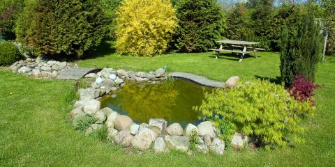 A Quick Guide to Backyard Ponds, East Bloomfield, New York