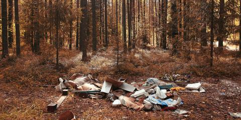 3 Devastating Consequences of Improper Waste Disposal, Queens, New York