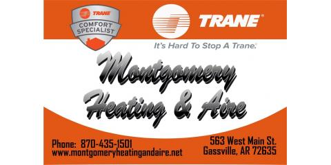 Trane CleanEffects Named First Whole Home Air Cleaning System to Earn asthma & allergy® Certification, Gassville, Arkansas