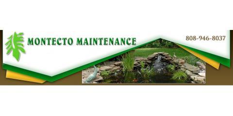 F.B.S Montecto Maintenance, Landscape Design, Services, Honolulu, Hawaii