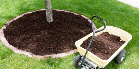 5 Types of Mulch & Their Benefits, Arcadia, New York