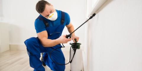 How to Find the Right Pest Control Company, Newport, Ohio