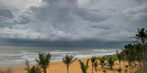 Hurricane Season Homeowner's Insurance Guide, Mebane, North Carolina