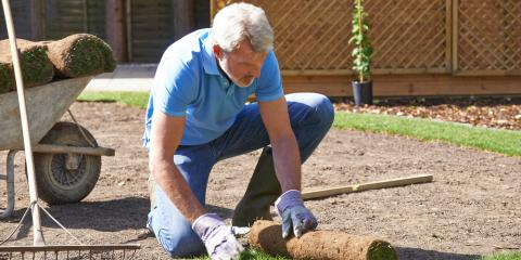3 Different Types of Sod & Their Benefits, Hill, Arkansas