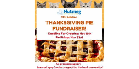 Don't Show Up Empty Handed! Nutmeg's Pie Fundraiser is Here!, Stratford, Connecticut