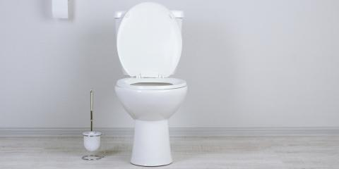 Four Do-It-Yourself Tips for Toilet Flushing Issues, Rochester, New York