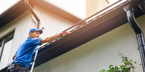3 Ways to Keep Tree Debris Out of Your Rain Gutters, Honolulu, Hawaii