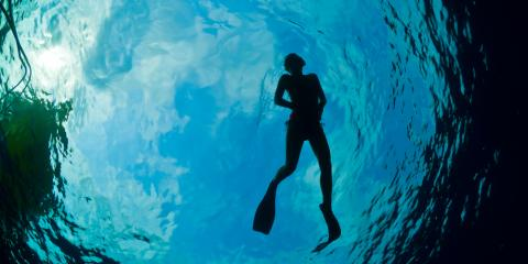 Why a Snorkeling Tour Is One of the Best Hawaiian Vacation Experiences, Ewa, Hawaii