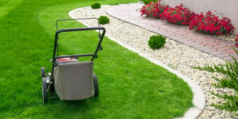 A Guide to Lawn Care & Fungal Diseases, Columbia, Missouri