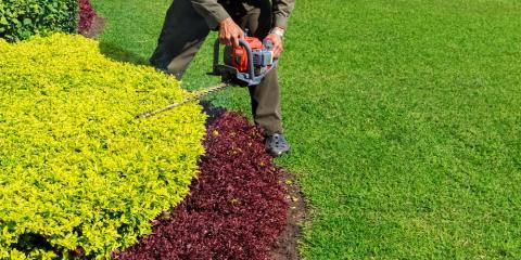 3 Tree & Shrub Pruning Factors to Consider, Missouri, Missouri