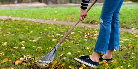 How to Winterize Your Lawn, St. Peters, Missouri