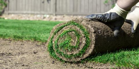 4 Maintenance Tips for Your Newly Sodded Yard, St. Peters, Missouri