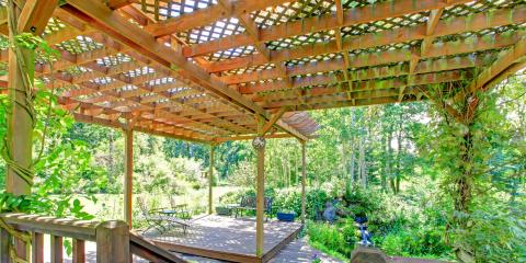 What Are the Best Plants to Grow on a Pergola?, ,