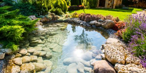 What to Consider Before Starting a Backyard Pond Project, Hill, Wisconsin