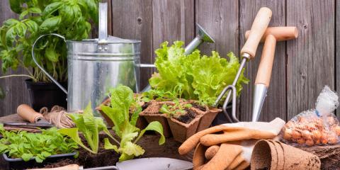 3 Ways to Improve Your Gardening Skills, Colerain, Ohio
