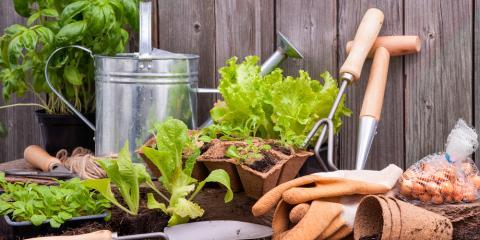 The Benefits of Gardening According to Ohio's Senior Home Care Experts, Colerain, Ohio