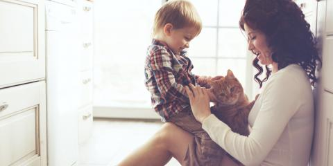 Do's & Don'ts to Prepare a Pet for a Baby, Honolulu, Hawaii