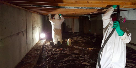 3 Household Hazards That Require Biohazard Cleanup, Loveland, Ohio