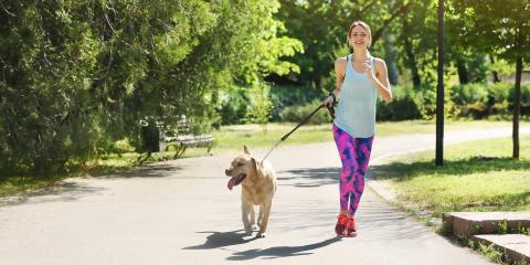 4 Benefits of Exercising Your Dog, Newport-Fort Thomas, Kentucky
