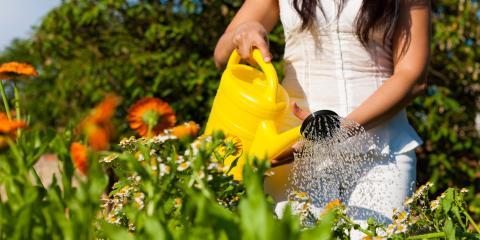 How to Practice Water Conservation in Your Garden , Delhi, Ohio