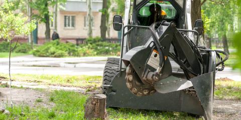 Top 4 Benefits of Stump Grinding, Hopewell, Ohio