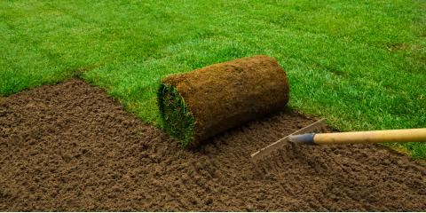 3 Benefits of Installing Sod in Your Yard, Omaha, Nebraska