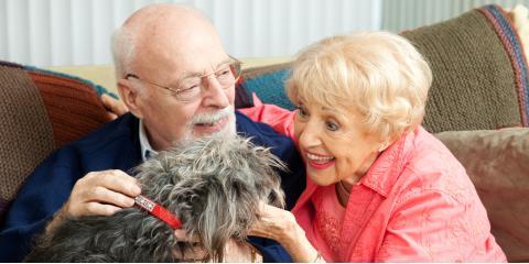 5 Ways Seniors Benefit From Pet Therapy, Onalaska, Wisconsin
