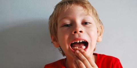 Oral Surgery Experts Explain the Six Stages of a Tooth, New London, Connecticut