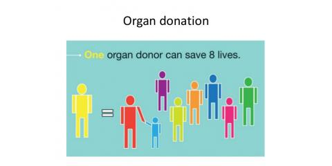 7 Truths About Organ Donation, West Adams, Colorado