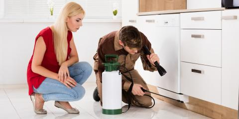 Need Pest Control? Top 3 Tips for Hiring the Right Service, Oshkosh, Wisconsin