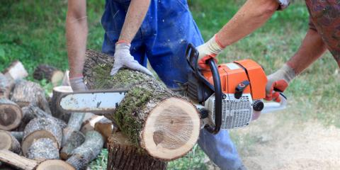 3 Types of Chainsaws to Have at Home, Chewelah, Washington