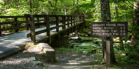 Hike 4 More Miles a Day with This Piece of Outdoor Equipment, Greenville, South Carolina