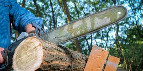 Granville Outdoor Power Equipment Experts Share 5 Chainsaw Safety Tips, Granville, Ohio