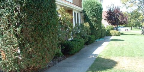 Southern Homes Gardens Landscaping In Montgomery Al Nearsay