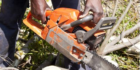 5 Reasons to Get Tree Removal Services , ,