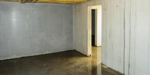 Water Extraction Pros Share 5 Ways to Save on Flooded Basement Expenses, Pagosa Springs, Colorado