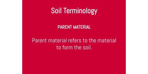 Soil Terminology: Parent Material, Brandon, Florida