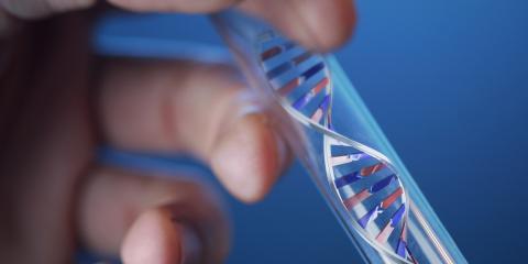 Research Reveals Role of LRRK2 Gene in Parkinson's Disease, Marlborough, Connecticut