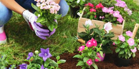 5 Tips for Keeping Your Garden Clean, Altadena, California