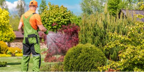 3 Ways a Landscaping Company Can Benefit Your Business, Altadena, California