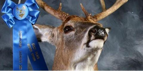 Commemorate Your Muzzle-Loader Season With Deer Mount Trophies From Patton's Taxidermy Shop, Loveland, Ohio