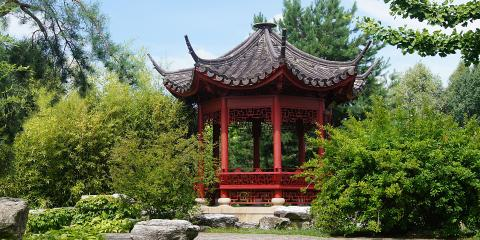 Learning the Chinese Language Will Help You Get Into Your Dream College, Manhattan, New York