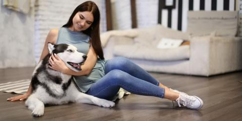 3 Dog-Friendly Flooring Options, Lehigh, Pennsylvania
