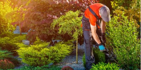 Why Is Shrub Trimming Important for Upkeep?, Trumbull, Connecticut
