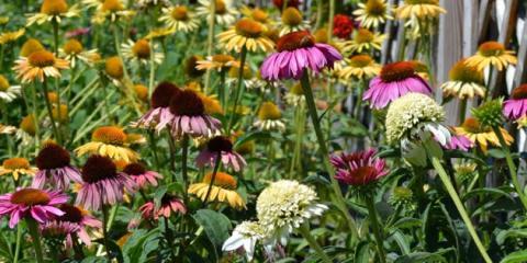 Lakeview Garden Center & Landscaping, Garden Centers, Services, Fairfield, Ohio