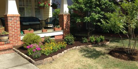 3 Perennials to Plant Before the Winter, Greensboro, North Carolina
