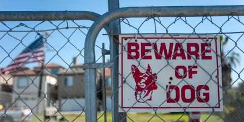 """A Personal Injury Attorney Shares What You Need to Know About """"Dangerous Dogs"""", Goshen, New York"""