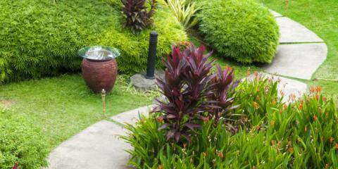 Your Guide to Organic Lawn Care & Gardening, Honolulu, Hawaii
