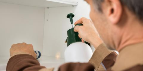 Pest Control Inspection: What the Process Entails, Mobile, Alabama